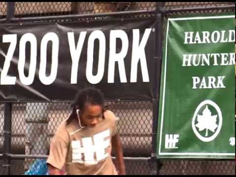 NY Clips: HAROLD HUNTER DAY X via Zoo York (2016)